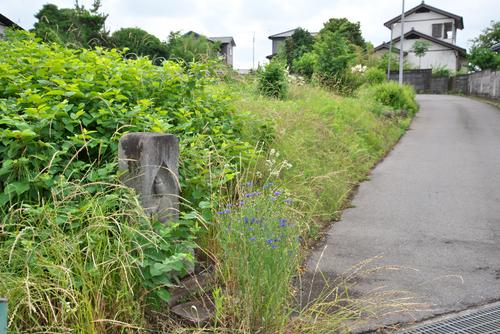 富士見町原之郷2200_01.jpg